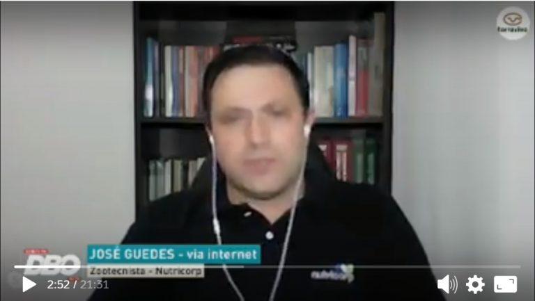 Entrevista Guedes